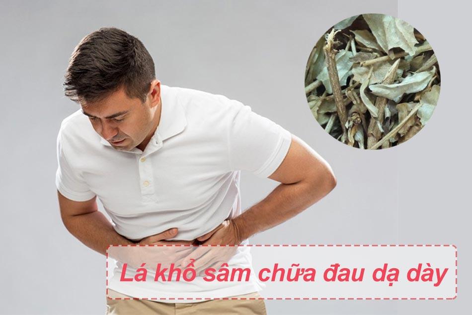 Khổ sâm chữa đau dạ dày